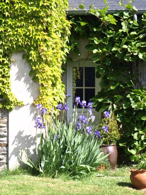 jardin-chambre-hote-castillon