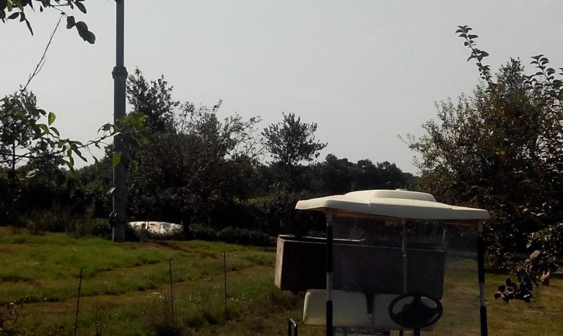 Réduire mon empreinte écologique avec le réseau des éleveurs de Notre Basse cour